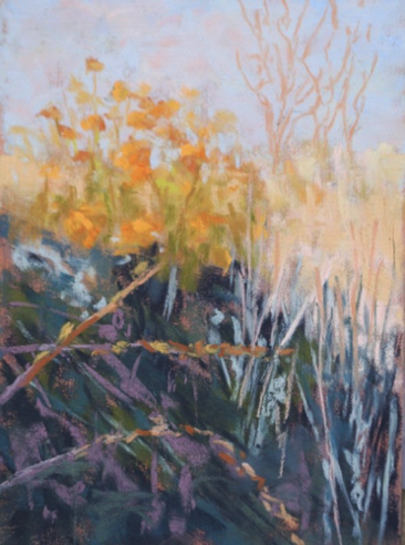 Gold Light On Fall Grass 5x7   Pastel